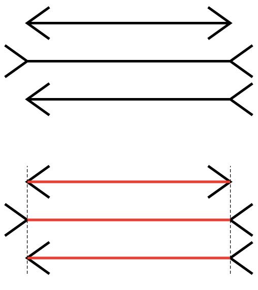 muller-lyer-lines