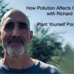 How Pollution Affects Chronic Disease with Richard Kwok: PYP 412